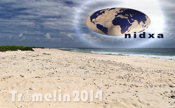 NIDXA Northern Illinois DX Association Logo